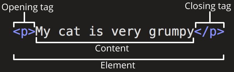 Grumpy Cat paragraph tag illustrating anatomy of HTML tag
