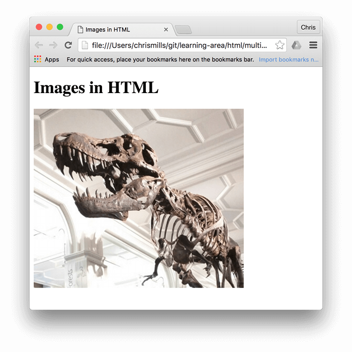 "A basic image of a dinosaur, embedded in a browser, with ""Images in HTML"" written above it"