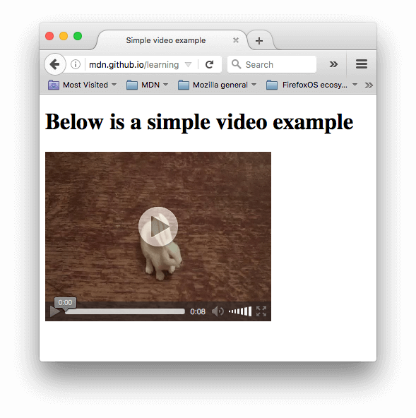 A simple video player showing a video of a small white rabbit